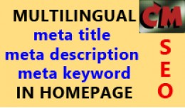 Multilingual SEO meta tags in homepage