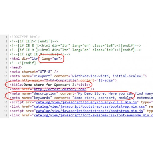 how to add meta tag to homepage