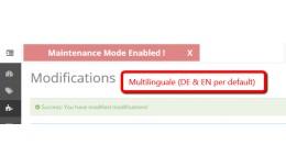 Maintenance Mode - Bugfix & Info