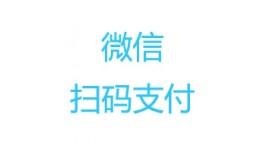 weixin native payment 微信扫码支付