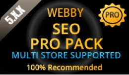 SEO TOOL ALL IN ONE PRO PACK Multi Store Ver6.x...