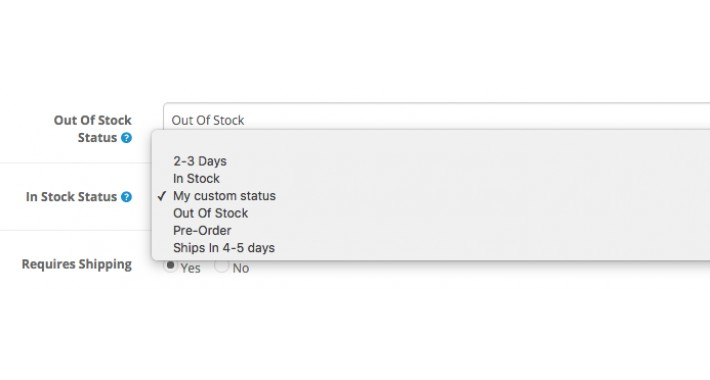 Custom Stock Availability Status Opencart 2