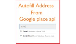 Autofill address on registration page