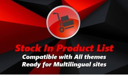 Stock in Product List