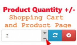 Product Quantity Plus Minus