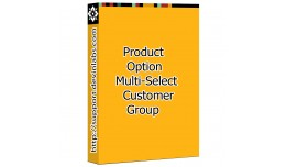 Product Option and Option Value Multi Customer G..