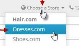 Multistores in header as dropdown menu