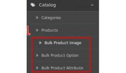 Bulk Product Updater