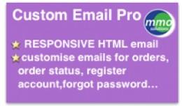 Custom Email PRO