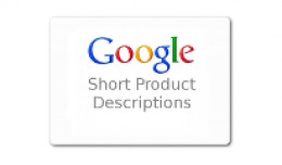 Product Short Description for Google
