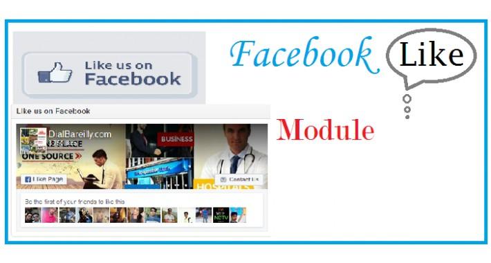 Facebook Like Module