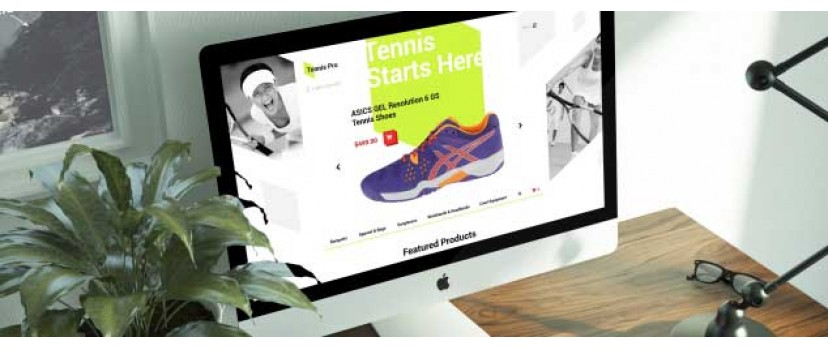 Top 10 Types of eCommerce Stores You Can Successfully Run with OpenCart