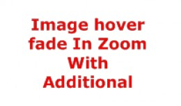Product Image hover fade In Zoom With Additional..