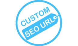 A Custom SEO Url