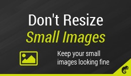 No Resize Small Images