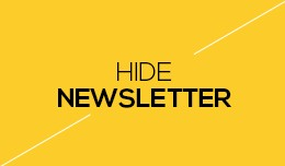 Hide Newsletter Section