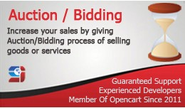 Auction Module