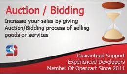 Auction Module