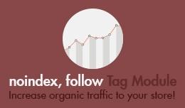 Noindex, Follow Tag Module
