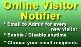 Online Visitor Notifier