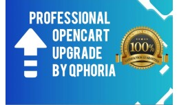 Professional OpenCart 2.x Upgrade (Basic) - Guar..