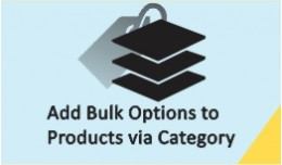 Add Bulk Options to Products via Category