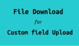 File Download For Custom field Upload By Customers