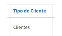 Customer Group in Sale   Tipo de Cliente en las ..