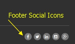 Footer Social Icons