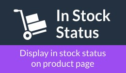 In Stock Status