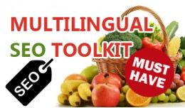 Multilingual SEO Toolkit - Bulk Editing, AutoFil..
