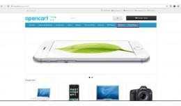 Selected Information Pages link on Header-OCMOD