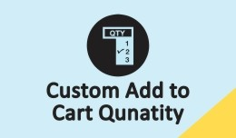 Custom Add to cart Quantity