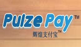 PulzePay - Payment Gateway