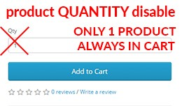 Disable Product Quantity Allow add only one prod..