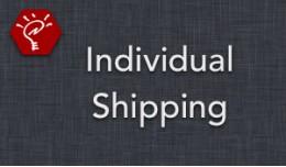 (2.x/3.x) Individual Shipping