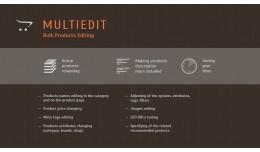 MULTIEDIT Module - Bulk Products Editing