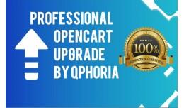 Professional OpenCart 3.x Upgrade (Basic) - Guar..