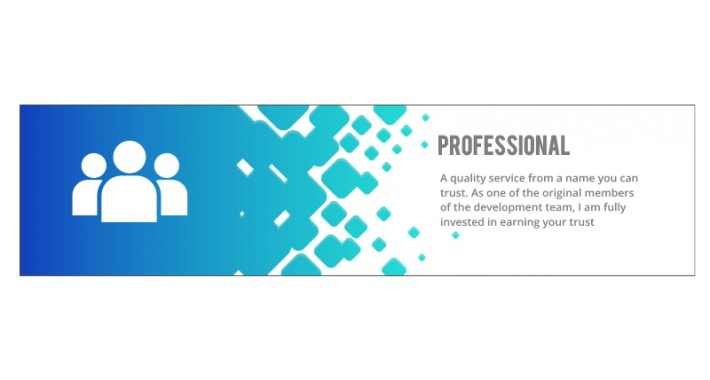 Professional OpenCart 3.x Upgrade (Basic) - Guaranteed Safe Data
