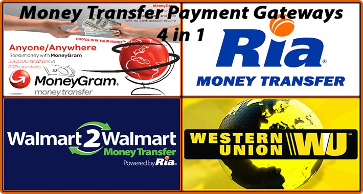 Money Transfer Payment Options