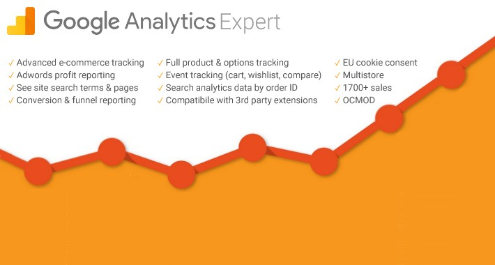 Google Analytics Expert - Advanced E-commerce Analytics Tracking