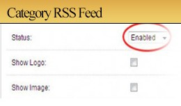 Category Rss Feed