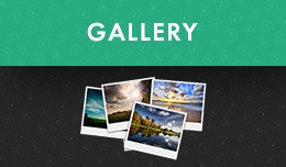 TheDK Gallery