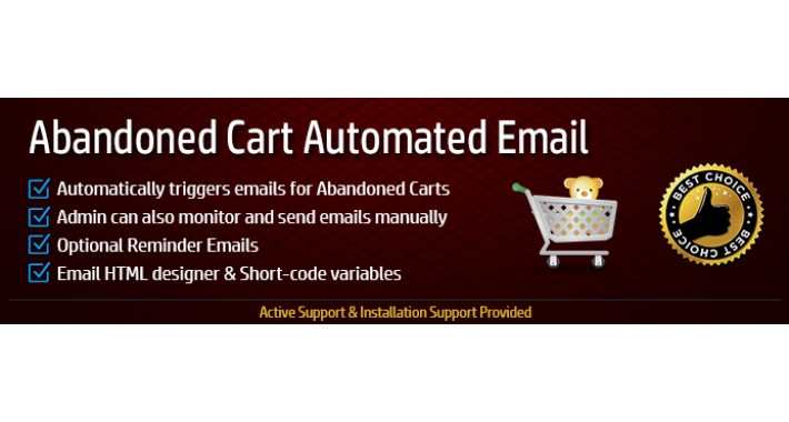 Abandoned Cart Email - Automated & Manual
