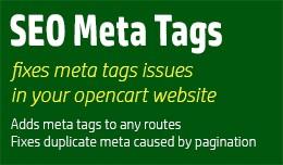 SEO Meta Tags / Fix duplicate title & meta d..