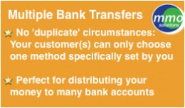 Multiple Banks Accounts payment option