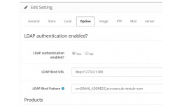 Customer Login With LDAP (Microsoft ActiveDirect..