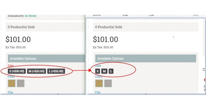 not show option value / remove option product value