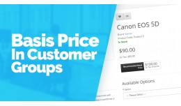 Basic Price In Customer Groups