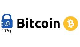 CryptoDiggers BTC Payment (2.2)